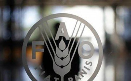 FAO launches 2016 as International Year of Legumes