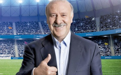 Vicente del Bosque reveals plan to quit Spain after Euro 2016 in new book