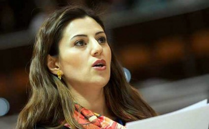 Azerbaijani MP elected as chair PACE Sub-Committee on European Social Charter