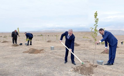 New mulberry gardens planted in Nakhchivan