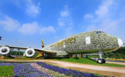 World`s largest floral installation breathes life into 380