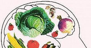 Vegetarianism harms the brain?
