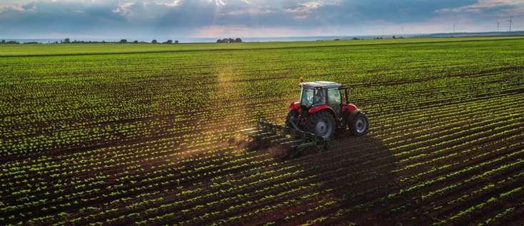Göyçayda payızlıq taxıl əkininə 120-dək traktor, 65-dən çox səpin aqreqatı cəlb olunub