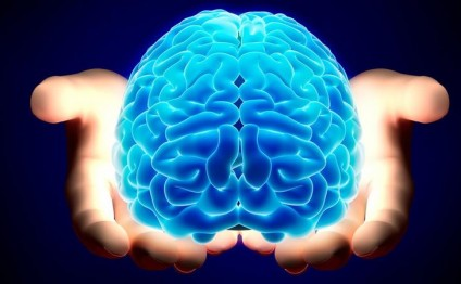 Beyni inkişaf etdirən hobbilər - FOTOLAR