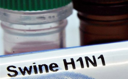 Azerbaijan under swine flu threat from Iran?